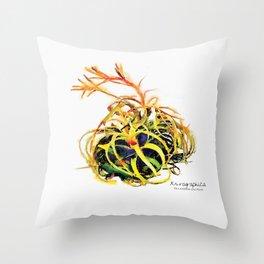 Tillandsia Xerographica Air Plant Watercolor Throw Pillow