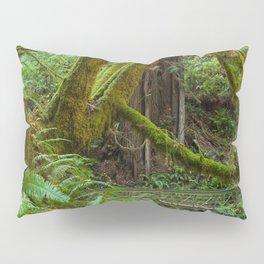 Autumn Greens Pillow Sham