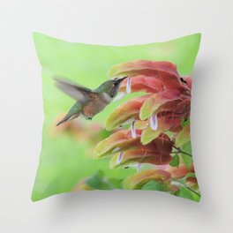 Hummingbird in Justicia Throw Pillow