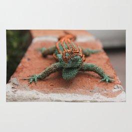 Copper Iguana Rug