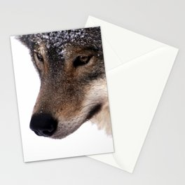 Wolf In the Snow Stationery Cards