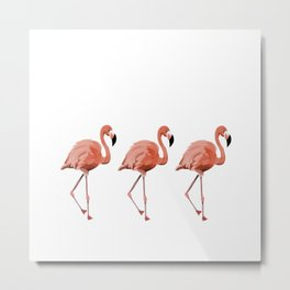 A Flamboyance of Flamingoes - Flamenco - 57 Montgomery Ave Metal Print