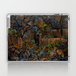 Mother of Thousands Laptop & iPad Skin