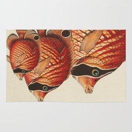 Fish Classic Designs 2 Rug