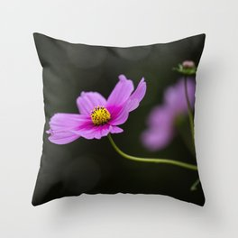 pink Cosmea summer flower Throw Pillow