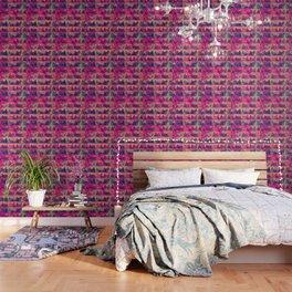cats-303 Wallpaper