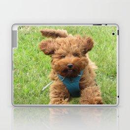 Luna the Labradoodle Laptop & iPad Skin