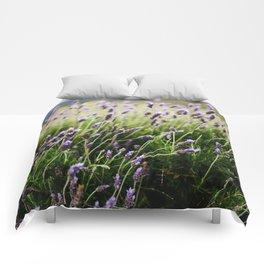 Island Lavender Comforters
