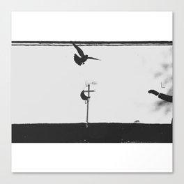 catch Canvas Print