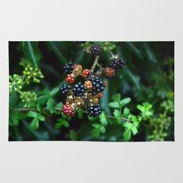 blackberries in red and black Rug