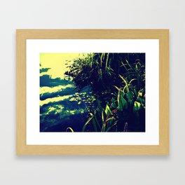 Down at the Pond Framed Art Print