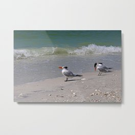 Waiting for Waves Metal Print