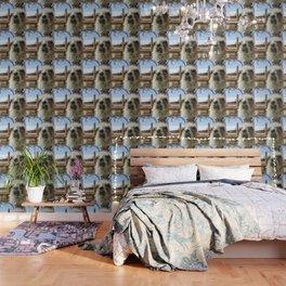 Lhama Wallpaper