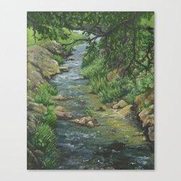 Butler Memorial Creek Canvas Print