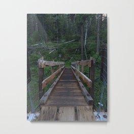 crossing over Metal Print