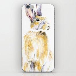 Hare Bunny iPhone Skin