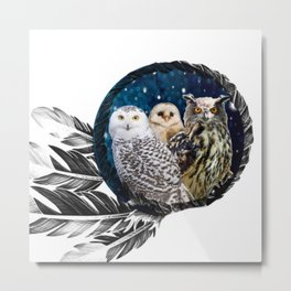 Owls Dream Metal Print