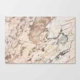 Polished Rose Marble Slab Canvas Print