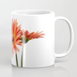 isolated gerbera daisy in the vase Coffee Mug