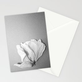 Ibiscus petals  Stationery Cards