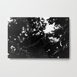 Wet Leaves Metal Print