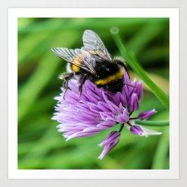 Bee Chive Art Print