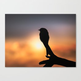 Watching The Sun Rise Canvas Print