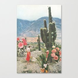 Decor Canvas Print