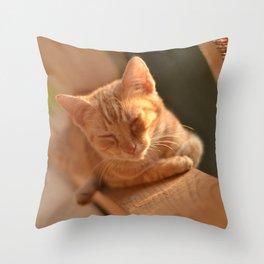 Sweet Oblivion Throw Pillow