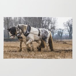 The Winter Plough Rug