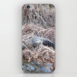Alligator iPhone Skin