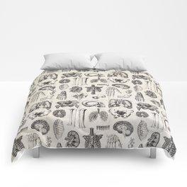 Human Anatomy Comforters