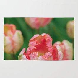 Orange Parrot Tulips Rug