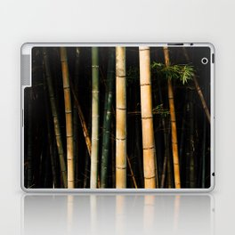 Bamboo Spectrum Laptop & iPad Skin