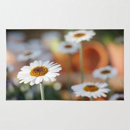 Daisys | marguerite Rug
