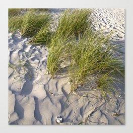 Sand Dune of Denmark Canvas Print