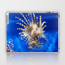Poisonous lionfish in blue water sea Laptop & iPad Skin