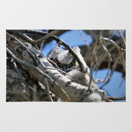 Greathorned Owlet Rug