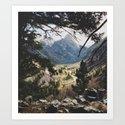 San Juan Forest by kevinruss