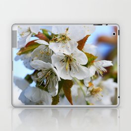 White Cherry Blossoms Laptop & iPad Skin