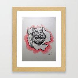 Blissful Rose Framed Art Print