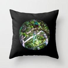 Quetzal Medallion Throw Pillow