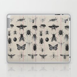 Vintage Insect Study on antique 1800's Ledger paper print Laptop & iPad Skin
