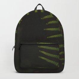 Fern 1 Backpack