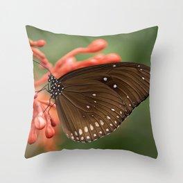 Butterfly On A Flower Throw Pillow