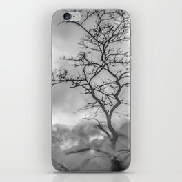 Mist in mountains iPhone Skin