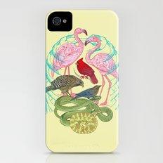 Wild Anatomy II Slim Case iPhone (4, 4s)