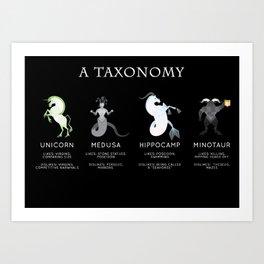 A taxonomy II Art Print