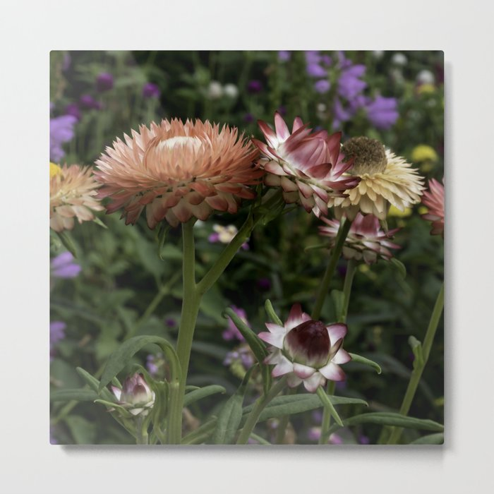 Color Therapy with Nature Metal Print