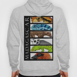 Animals of Madagascar Hoody